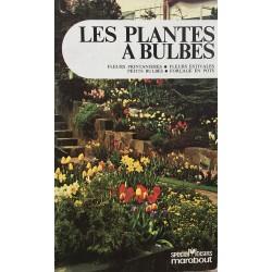 Les plantes à bulbes