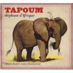 Tapoum éléphant d'Afrique