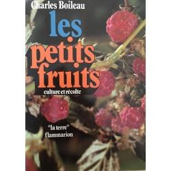 Les petits fruits - Culture...