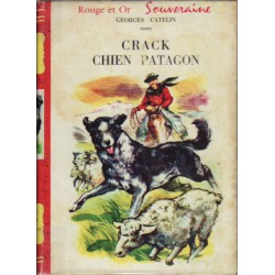 Crack chien Patagon