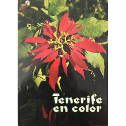 Tenerife en color
